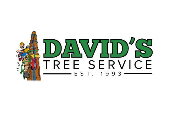 davids-tree-service